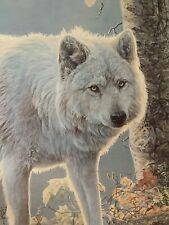 Autumn Glow - White Wolf Jan Martin McGuire Signed Ltd Ed 264/550 Wild Wings