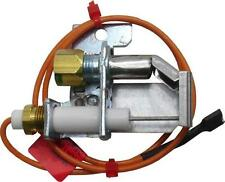 SP12560C Spark Ignitor and Pilot Assembly - LP Gas Rheem/Ruud Same Day Shipping
