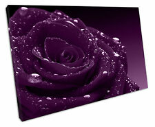 WATER DARK PURPLE ROSE CANVAS WALL ART PICTURE LARGE 75 X 50 CM