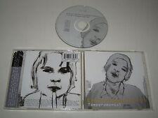 EVERYTHING BUT THE GIRL/TEMPERAMENTAL(VIRGIN/CDV2892)CD ALBUM