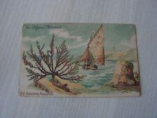 carte  postale   les algues marines   (ref46)