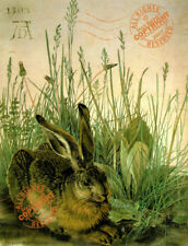 ALBRECHT DURER Hare Rabbit in weeds 1502 Graphic Nature = Fine ART PRINT 8x10""
