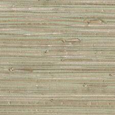 GRASSCLOTH GREEN BEIGE Wallpaper Natural York NZ0780 DOUBLE ROLLS  FREE SHIPPING