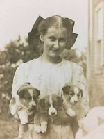 Antique 1912 Real Photo Postcard Girl Big Hair Bow Holding 3 Puppies Dogs