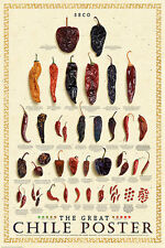 CHILE CHART POSTER cuisine restaurant guide culinary seasonings chilli print