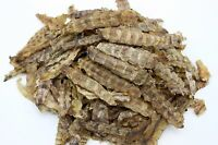 Dried Seafood Dried Mantis Shrimps 瀨尿蝦干 Free Worldwide AIR Mail