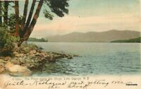 1908 Pines along the Shore Lake George New York Rotograph postcard 10559