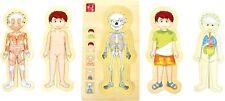 Puzzle Anatomie Tim aus Holz Spielzeug Puzzle Lernspielzeug Schule Kinder NEU
