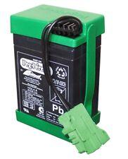 Peg Perego 6 Volt Battery SAGI8324VF