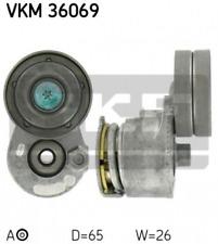 Spannrolle, Keilrippenriemen für Riementrieb SKF VKM 36069