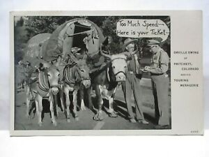1940 POSTCARD ORVILLE EWING PRITCHETT CO, W/ MULES AND WAGON GIVEN TICKET BY COP