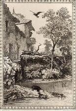 EAU FORTE / Fables de la Fontaine 1883 / LA GRENOUILLE ET LE RAT