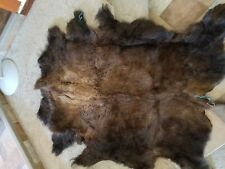 Buffalo Hide Rug, 'Large' Premium Winter Coat Tanned Bison Rug, Made In The USA