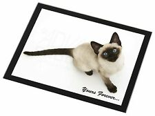 Siamese Cat 'Yours Forever' Black Rim Glass Placemat Animal Table Gift, AC-145GP