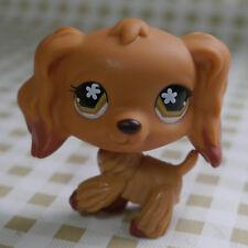 Brown Cocker brown eyes Dog pubby #716 LITTLEST PET SHOP LPS Action Figure