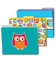CD 136009 Colorful Owls File Folders Classroom Organizer Teacher Supplies