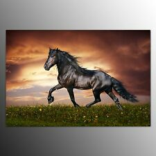 FRAMED Canvas Prints Wall Art Animals Oil Painting For Home Decor Running Horse