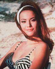 """Claudine Auger James Bond 007 10"""" x 8"""" Photograph no 10"""