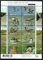 Netherlands Stamp - Birds Stamp - NH