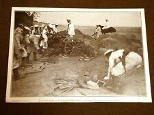 Spedizione Italia Tripolitania Libia nel 1911 Batterie Battaglia Sciara Sciat