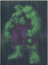 The Incredible Hulk [2003] Gamma Ray Chase Card #8