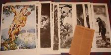 Zed Burian JUNGLE SCENES OF TARZAN 30 page art folio, 10 x 15 in.