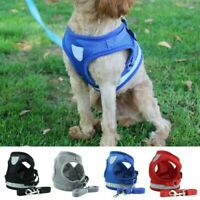 Small Puppy Dog Cat Harness and Walking Leads Set Pet Breathable Mesh Vest