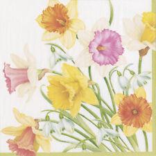 Daffodil waltz Spring Floral Caspari Paper Lunch Napkins 33cm sq 20 pack