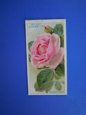 ORIGINAL CIGARETTE CARD: Wills - Roses - Conrad F Meyer No.17