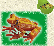 4D Animal Puzzle Toy Assembly Tree Frogs B in Egg #B-85
