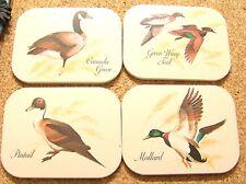 4 Waterfowl coasters Pintail, Green Wing Teal, Canada Goose, Mallard