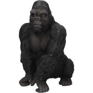 BIG KONG Large Silverback Gorilla Monkey Ornament 41cm Nemesis Now BNIB FREE P+P