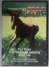 Building Foundation Ride On Horse Training Handling Haltering Foal Bob Dickenson