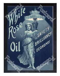 Historic White Rose Lamp Oil, 1890s. Advertising Postcard 2