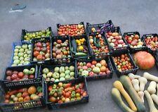 ☺10 sachets de 20 graines de tomates anciennes