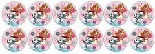 Paw Patrol Skye Everest -  Edible Image ICING cupcake Toppers x 12