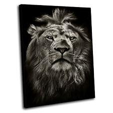 Lion Canvas Wall Art 90x60cm Framed Picture Print 4 PREMIUM PRe