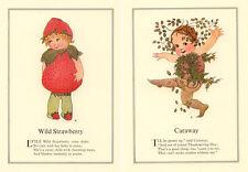 8 FINE Flower Faerie Prints MT Ross E Gordon Volland Vegetable Children Fairie