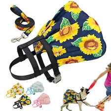 Cute Nylon Dog Pet Harness and Leash Fancy Floral Cat Walking Dress Skirt Adjust