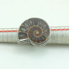Natural Druzy Ammonite Fossil Shell Gemstone Ring Jewelry 19 Grams Size US 7.25