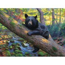 SUNSOUT JIGSAW PUZZLE LAZY BOY MARK KEATHLEY 1000 PCS BLACK BEAR #52986