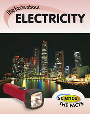 Electricity (Science The Facts), Rebecca Hunter, New Book