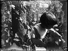 Petite fille dans le jardin  -  négatif photo verre photo - an. 1910 20