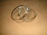 60mm Glass tissue petri dish, culture dish, culture plate with cover