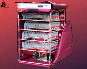 Digital Egg Incubator-Automatic Remote Control-Broody WiFi -backup battery power