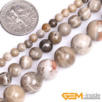 """Natural Gray Fossil Coral Jasper Gemstone Round Spacer Loose Beads Strand 15"""""""