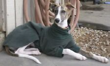 ANY SOLID COLOR PULLOVER JAMMIE COAT GREYHOUND SALUKI DOBERMAN PINSCHER XOLO