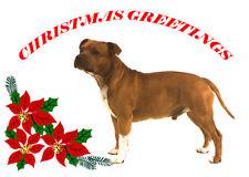 STAFFORDSHIRE BULL TERRIER SINGLE DOG PRINT GREETING CHRISTMAS CARD