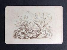 Victorian Carte De Visite CDV: Newcombe: Album Filler Card