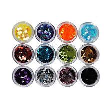 12Big Hexagon Glitter Nail Art Deco Kit Acrylic UV Powder Dust Deco Stamp